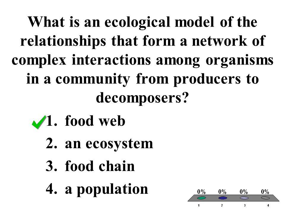 What is an ecological model of the relationships that form a network of complex interactions among organisms in a community from producers to decomposers