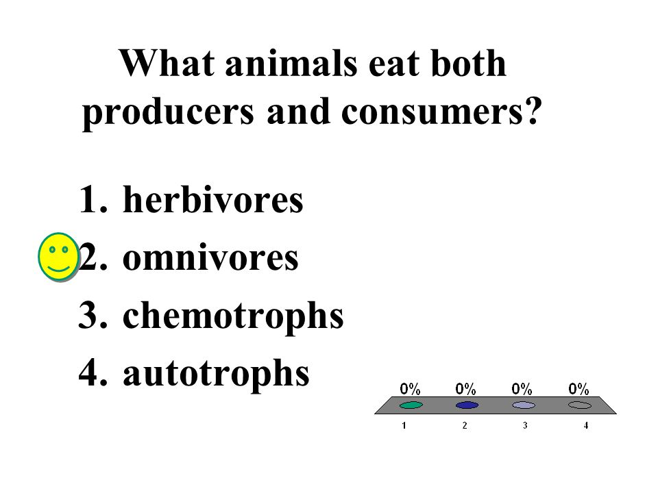 What animals eat both producers and consumers