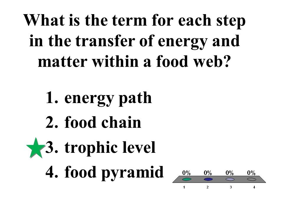 What is the term for each step in the transfer of energy and matter within a food web