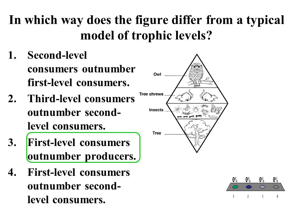 In which way does the figure differ from a typical model of trophic levels