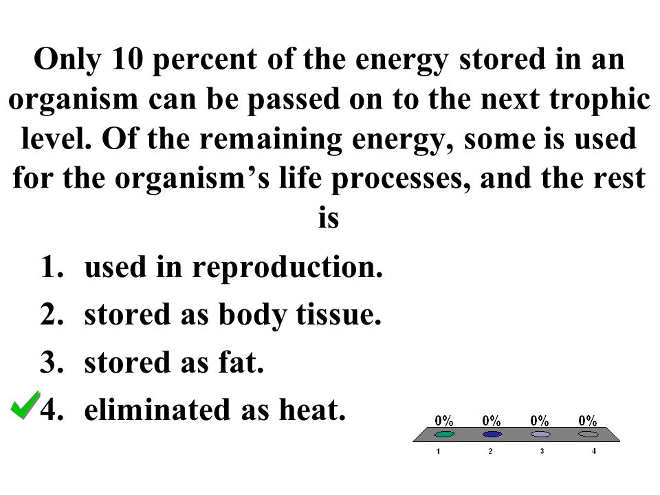 Only 10 percent of the energy stored in an organism can be passed on to the next trophic level. Of the remaining energy, some is used for the organism's life processes, and the rest is