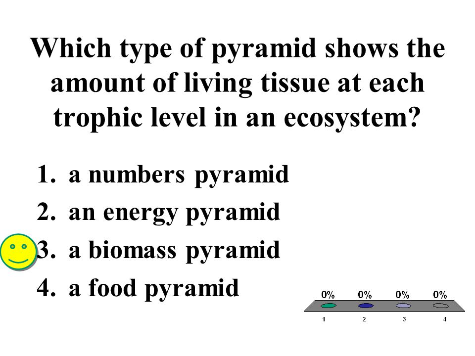 Which type of pyramid shows the amount of living tissue at each trophic level in an ecosystem