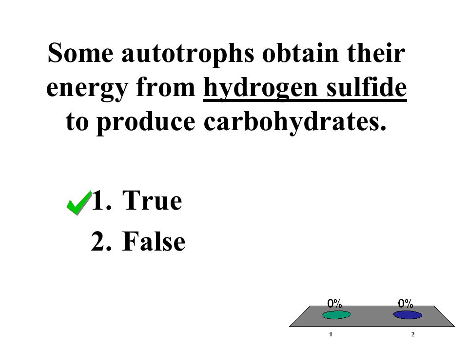 Some autotrophs obtain their energy from hydrogen sulfide to produce carbohydrates.