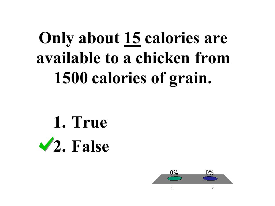 Only about 15 calories are available to a chicken from 1500 calories of grain.