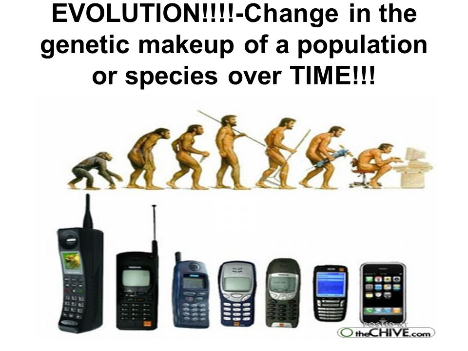 EVOLUTION!!!!-Change in the genetic makeup of a population or species over TIME!!!