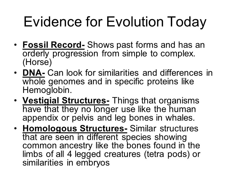 Evidence for Evolution Today