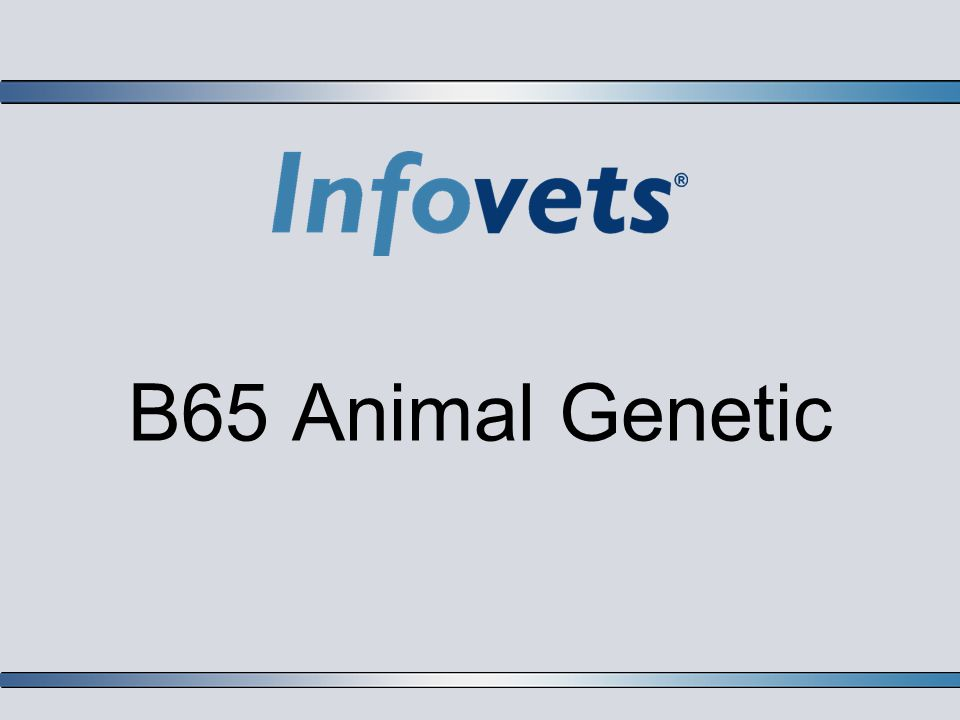 B65 Animal Genetic