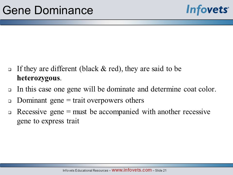 Gene Dominance If they are different (black & red), they are said to be heterozygous.
