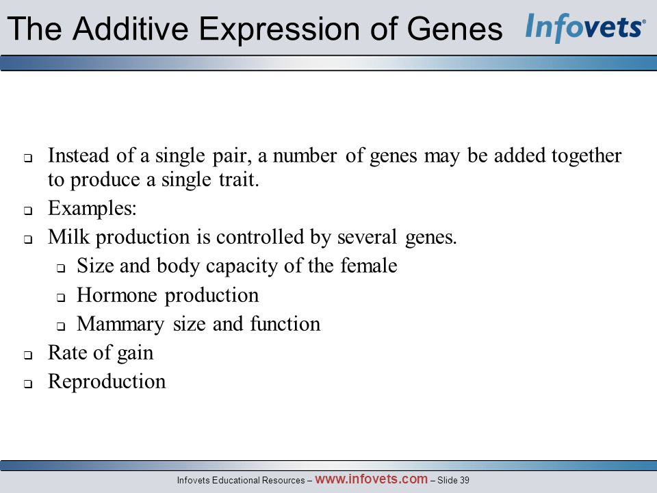 The Additive Expression of Genes