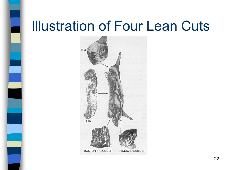 Illustration of Four Lean Cuts