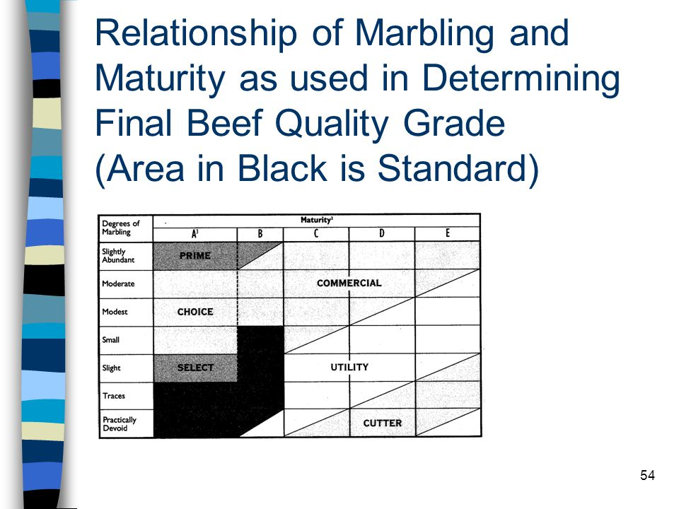 Relationship of Marbling and Maturity as used in Determining Final Beef Quality Grade (Area in Black is Standard)