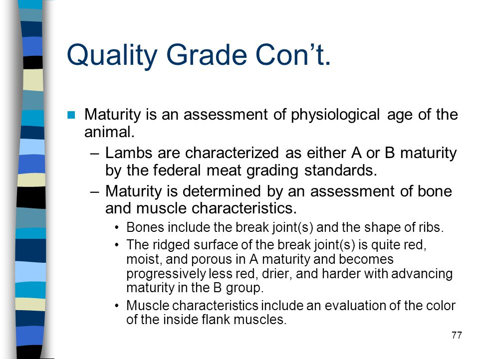 Quality Grade Con't. Maturity is an assessment of physiological age of the animal.
