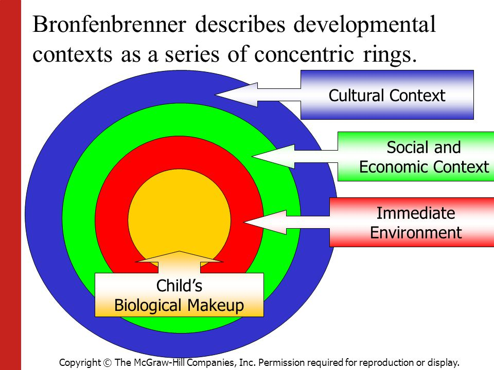 Bronfenbrenner describes developmental contexts as a series of concentric rings.