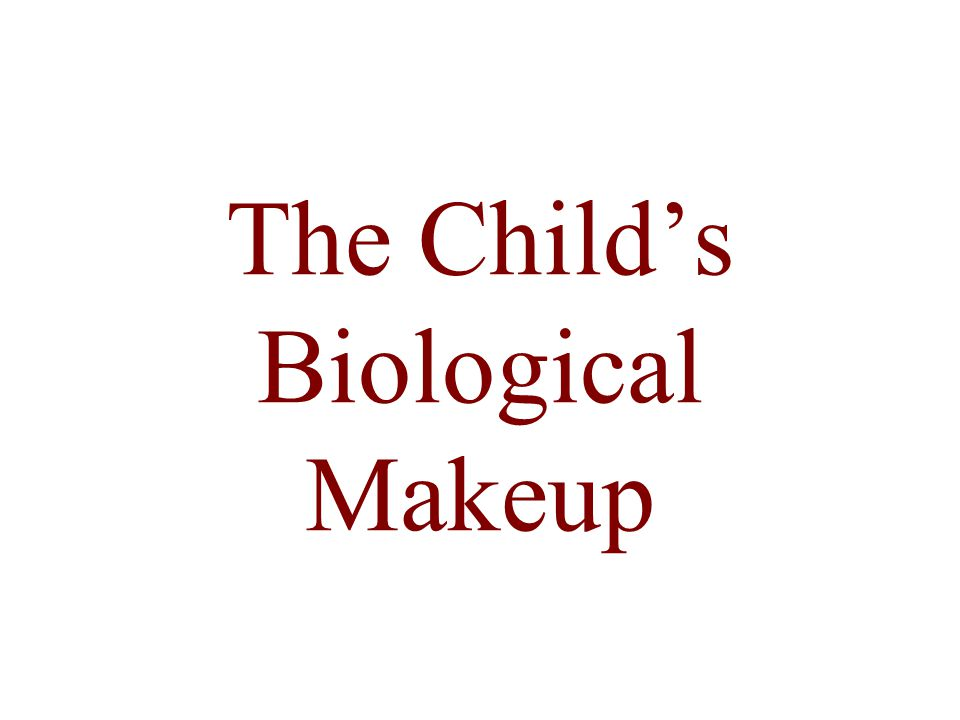 The Child's Biological Makeup