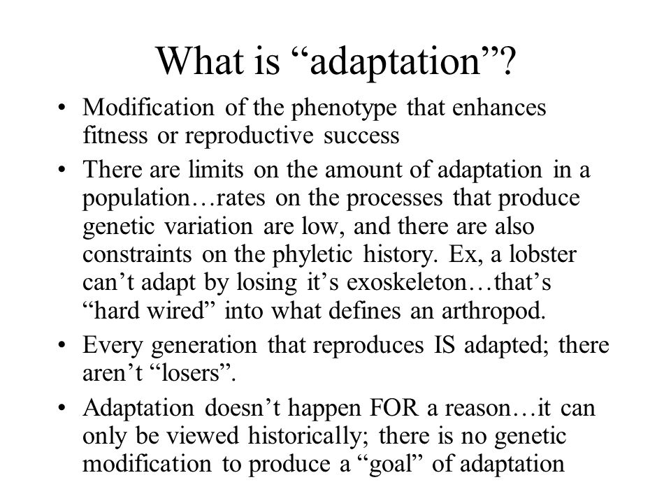 What is adaptation Modification of the phenotype that enhances fitness or reproductive success.