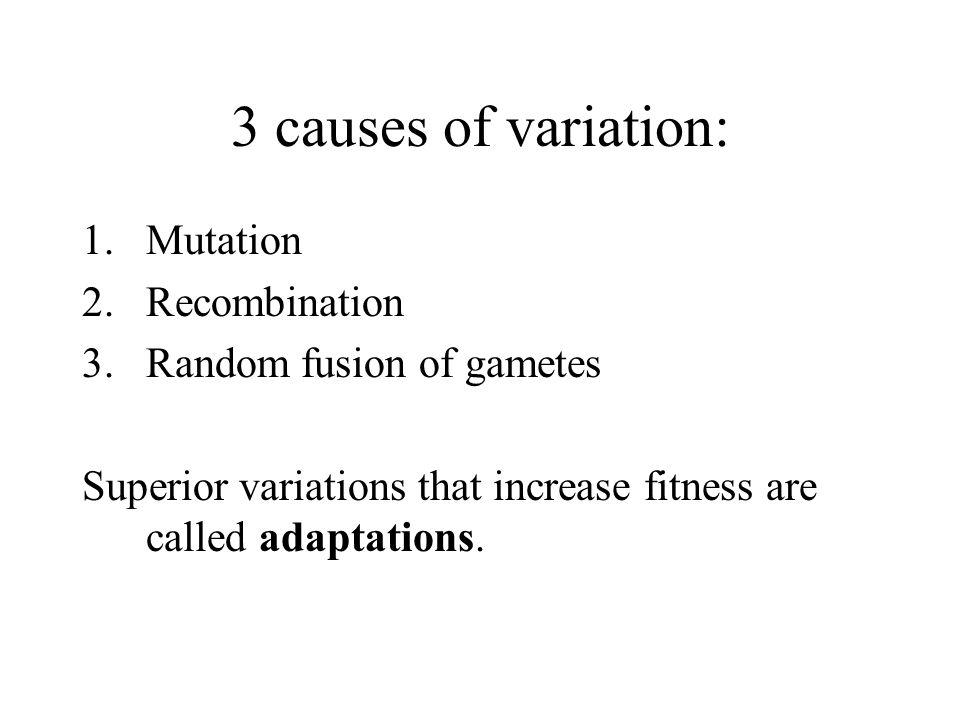 3 causes of variation: Mutation Recombination Random fusion of gametes