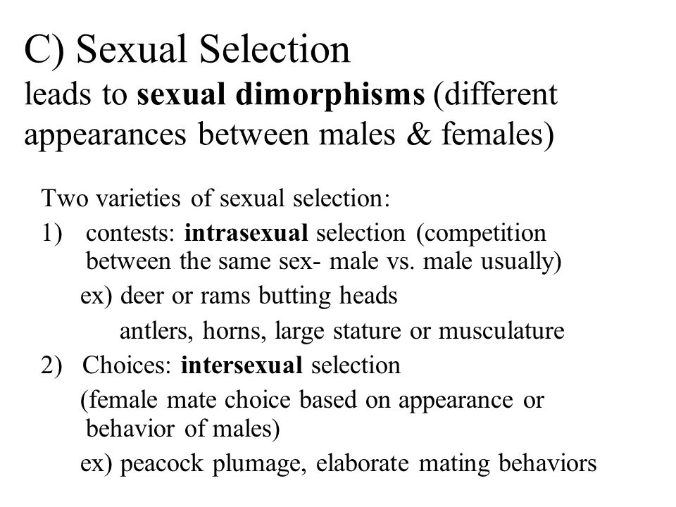 C) Sexual Selection leads to sexual dimorphisms (different appearances between males & females)