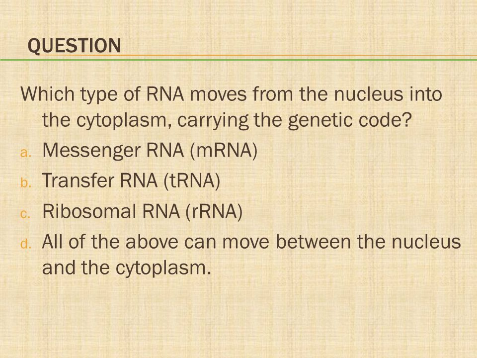 Question Which type of RNA moves from the nucleus into the cytoplasm, carrying the genetic code Messenger RNA (mRNA)