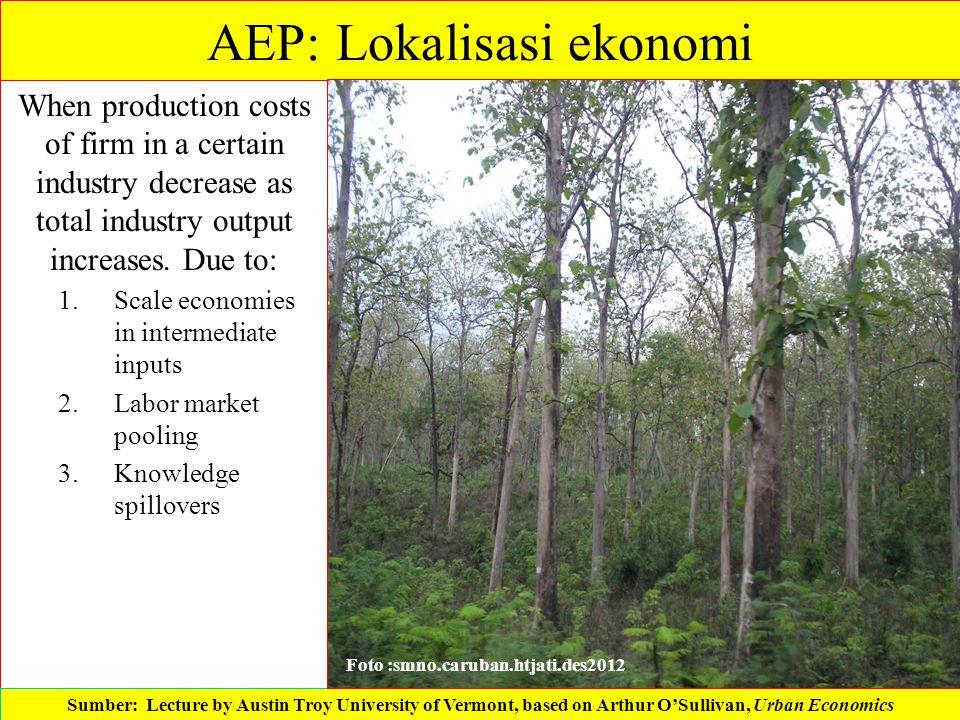 AEP: Lokalisasi ekonomi