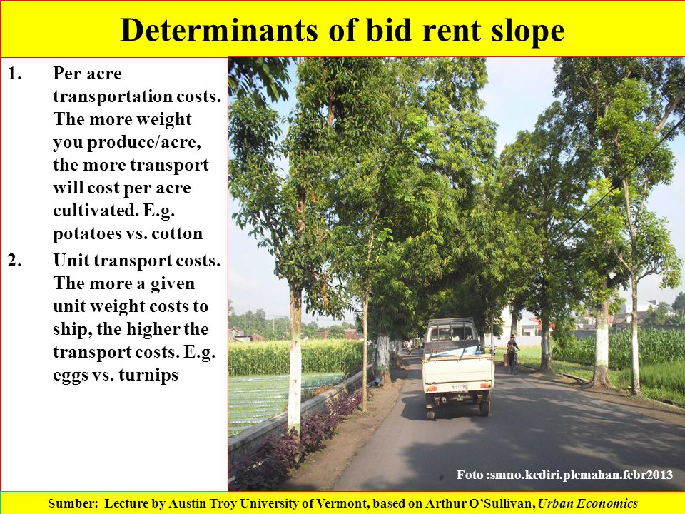 Determinants of bid rent slope