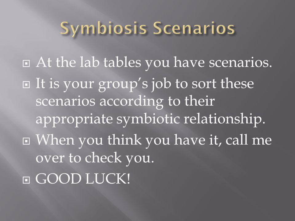 Symbiosis Scenarios At the lab tables you have scenarios.