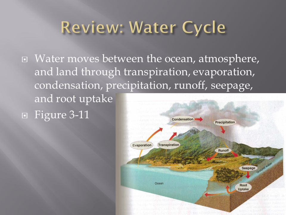 Review: Water Cycle