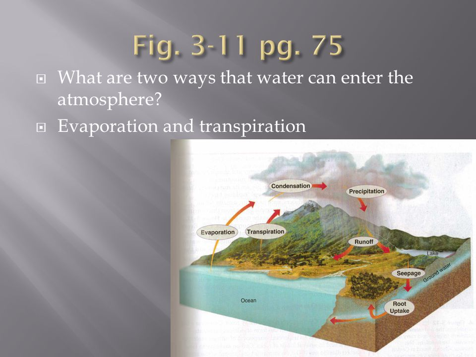 Fig. 3-11 pg. 75 What are two ways that water can enter the atmosphere.