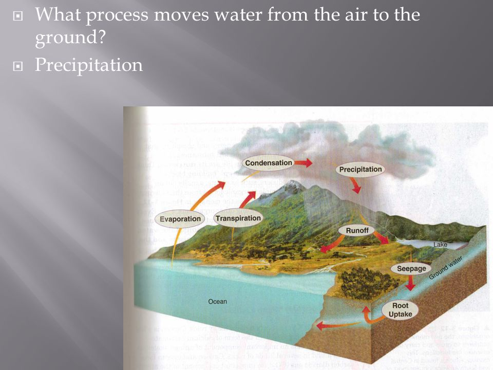 What process moves water from the air to the ground