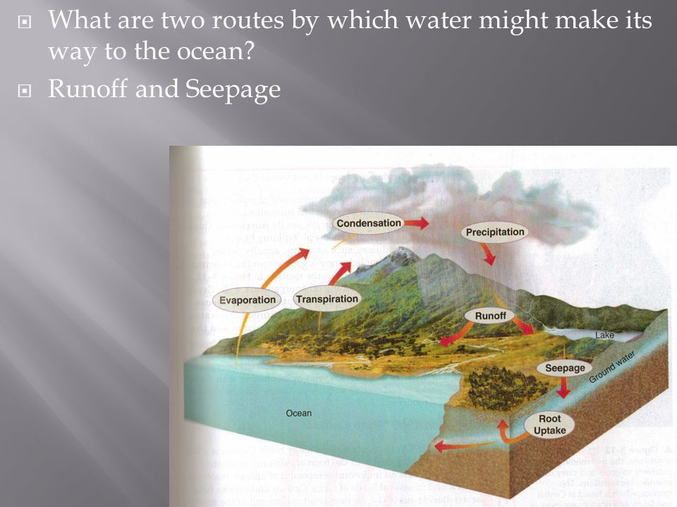 What are two routes by which water might make its way to the ocean