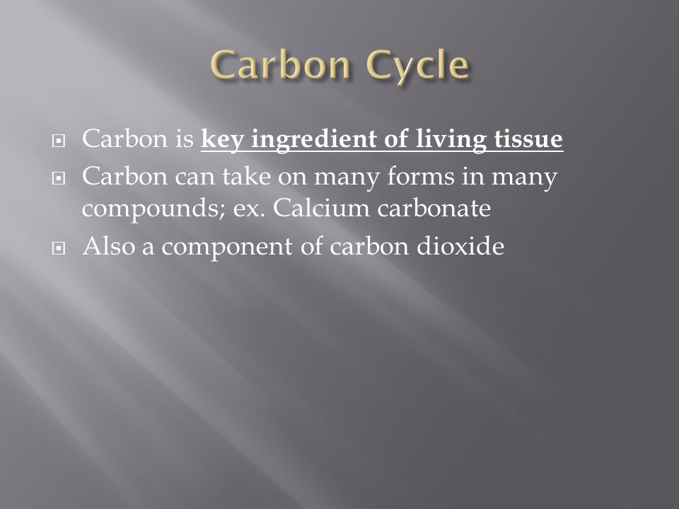 Carbon Cycle Carbon is key ingredient of living tissue