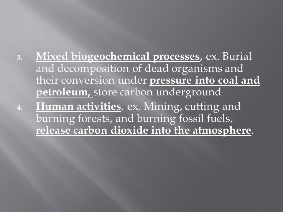 Mixed biogeochemical processes, ex