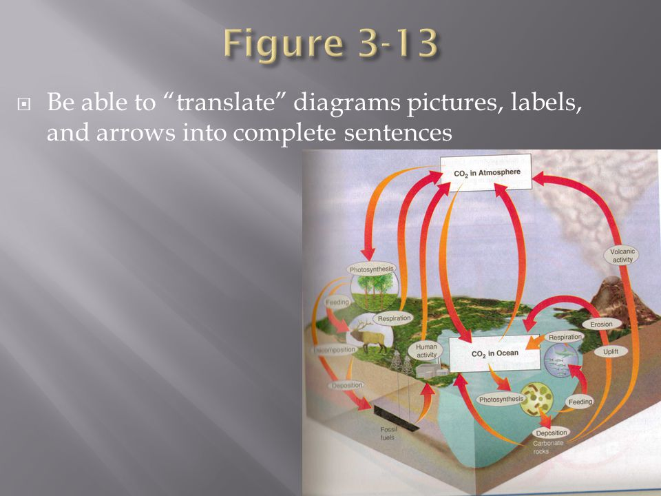Figure 3-13 Be able to translate diagrams pictures, labels, and arrows into complete sentences