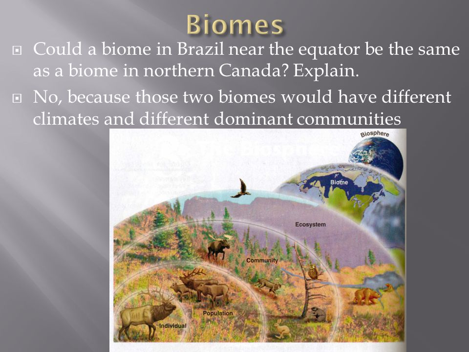 Biomes Could a biome in Brazil near the equator be the same as a biome in northern Canada Explain.