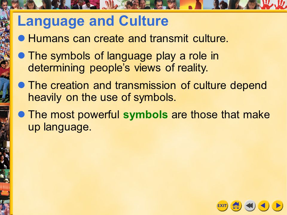 Language and Culture Humans can create and transmit culture.