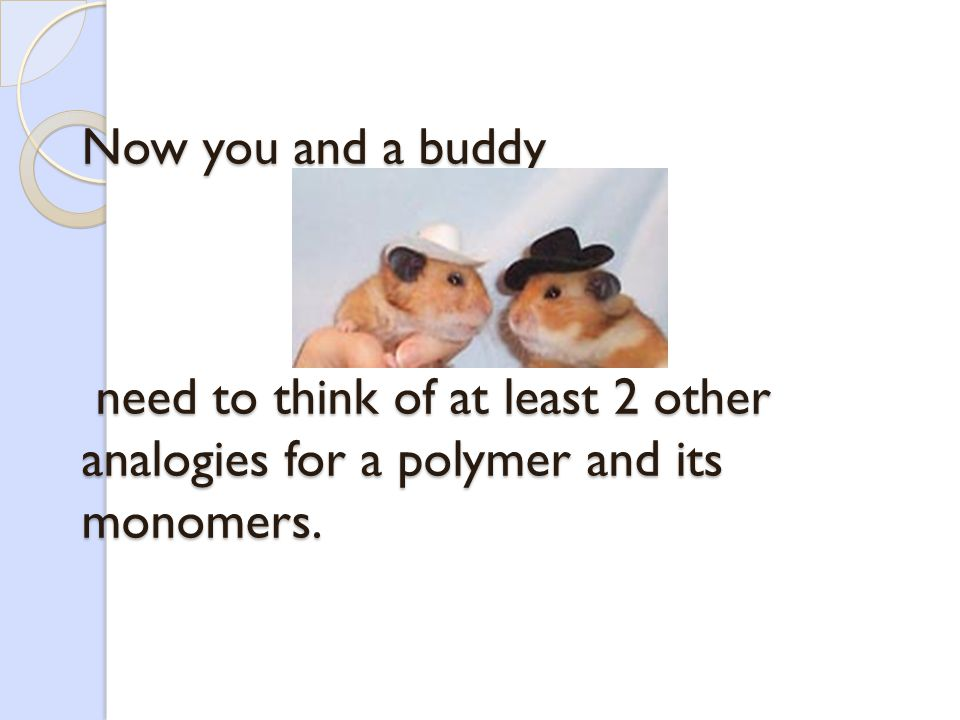 Now you and a buddy need to think of at least 2 other analogies for a polymer and its monomers.