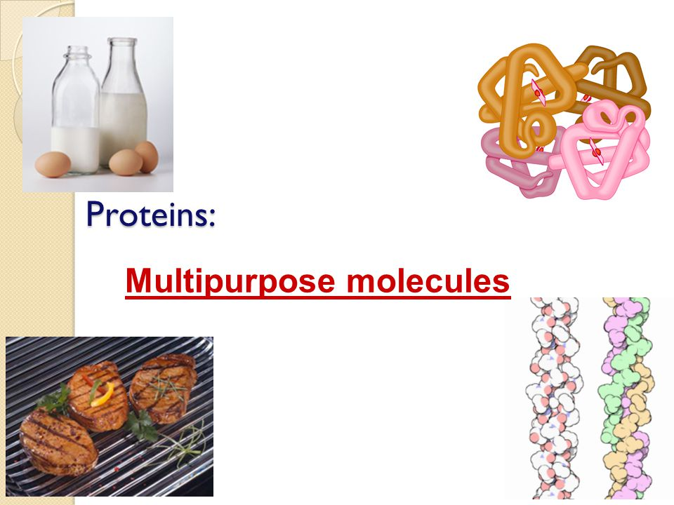 Proteins: Multipurpose molecules