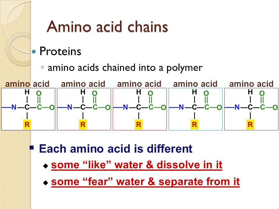 Amino acid chains Proteins Each amino acid is different