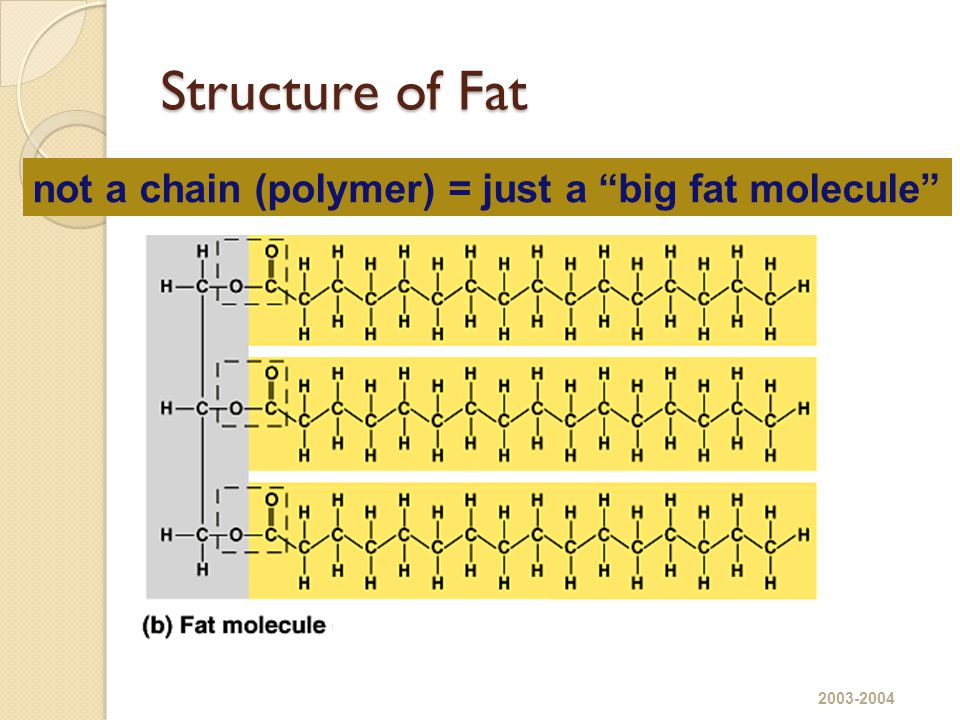 Structure of Fat not a chain (polymer) = just a big fat molecule