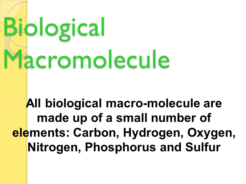 Biological Macromolecule