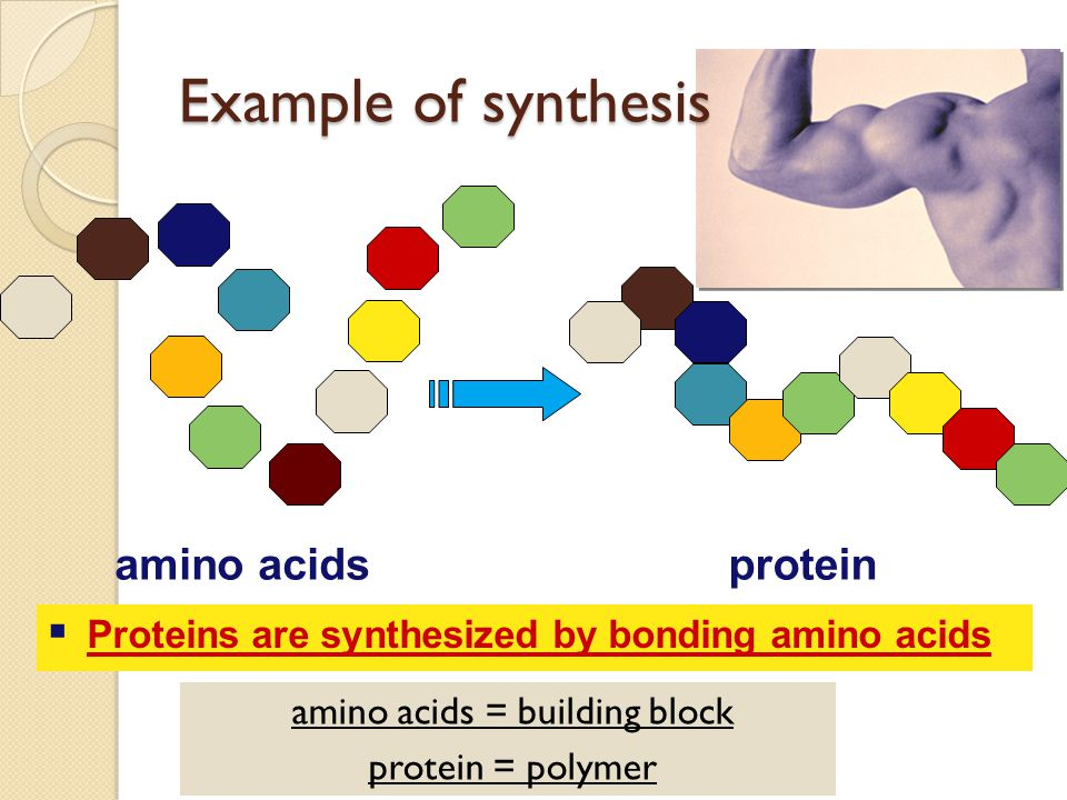 amino acids = building block
