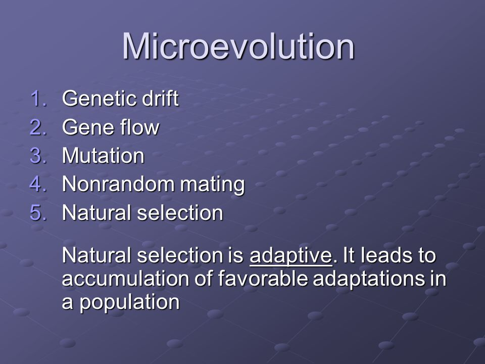 Microevolution Genetic drift Gene flow Mutation Nonrandom mating