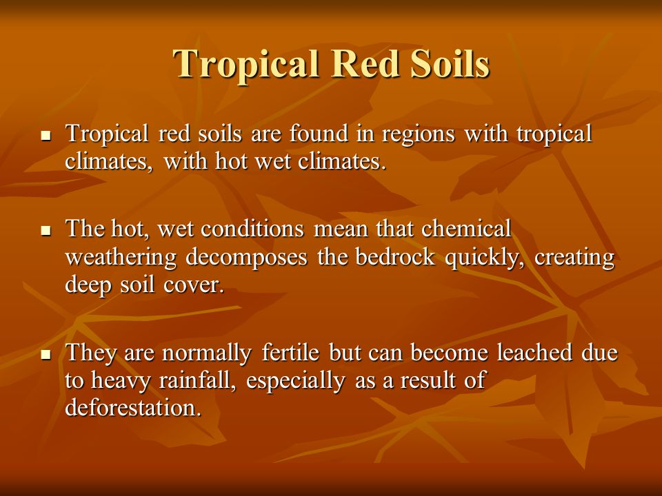 Tropical Red Soils Tropical red soils are found in regions with tropical climates, with hot wet climates.