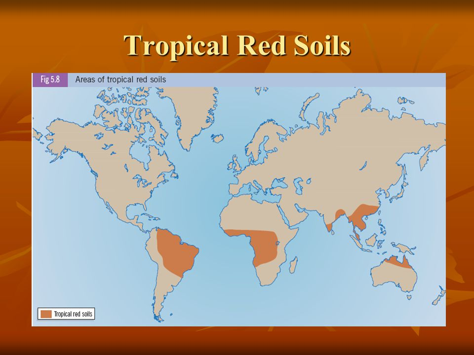 Tropical Red Soils