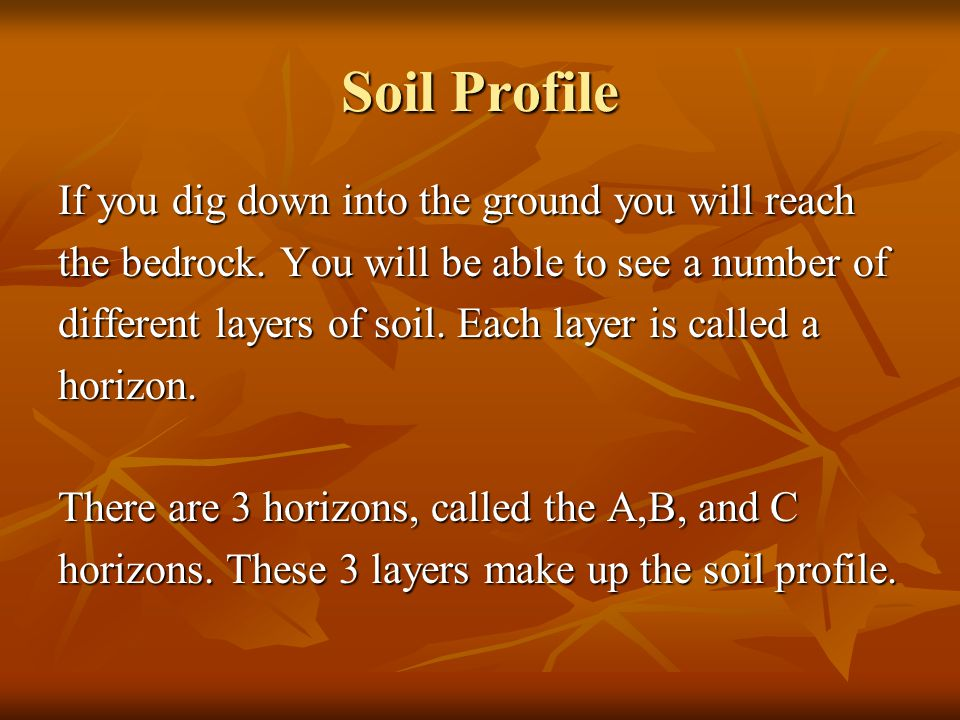 Soil Profile If you dig down into the ground you will reach