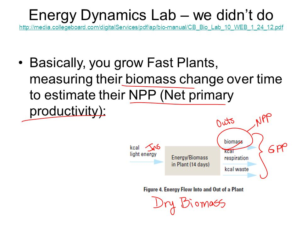 Energy Dynamics Lab – we didn't do http://media. collegeboard