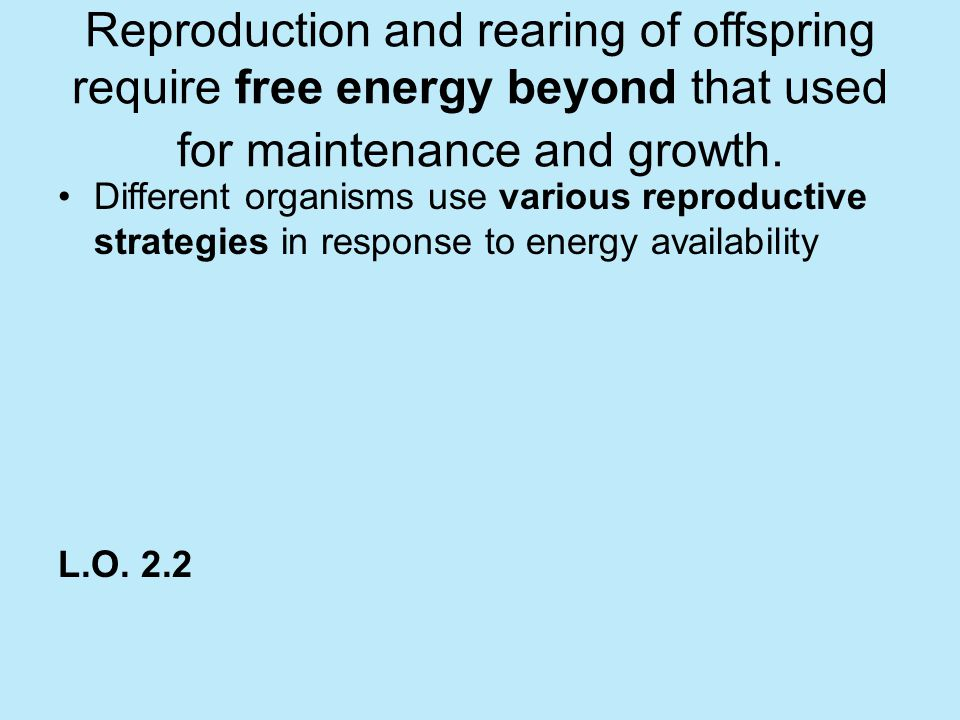 Reproduction and rearing of offspring require free energy beyond that used for maintenance and growth.