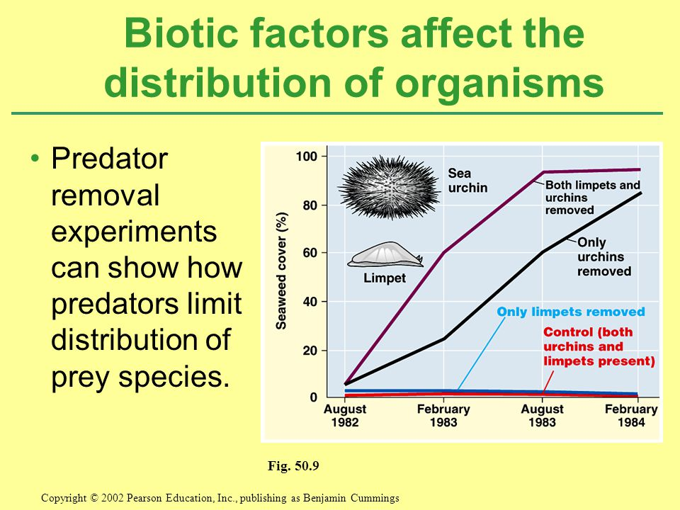 Biotic factors affect the distribution of organisms