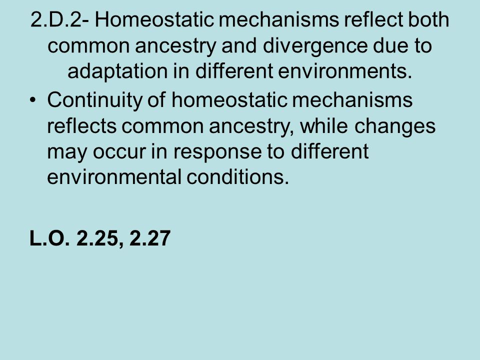 2.D.2- Homeostatic mechanisms reflect both common ancestry and divergence due to adaptation in different environments.