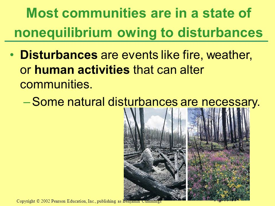 Most communities are in a state of nonequilibrium owing to disturbances