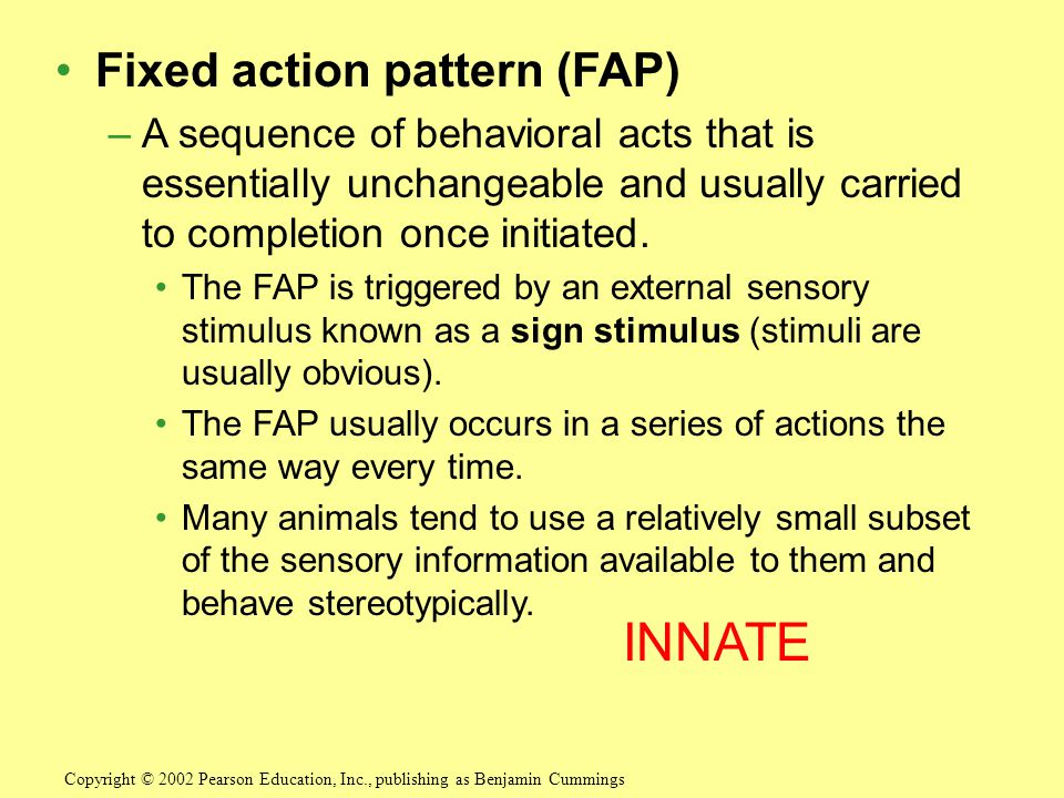 INNATE Fixed action pattern (FAP)
